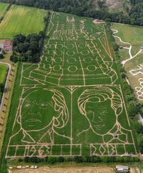 Corn Maze WIN