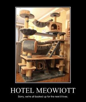 HOTEL MEOWIOTT