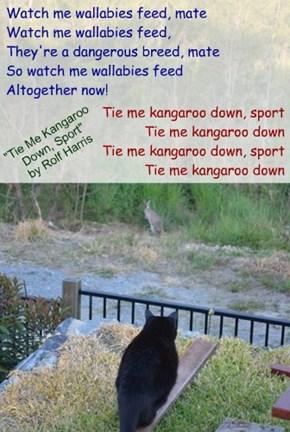 """""""Tie Me Kangaroo Down, Sport"""" by Rolf Harris"""