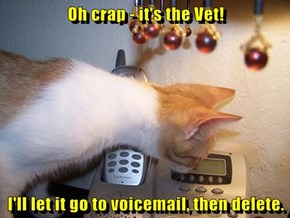 Oh crap - it's the Vet!  I'll let it go to voicemail, then delete.