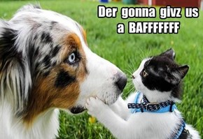 Der  gonna  givz  us a  BAFFFFFFF