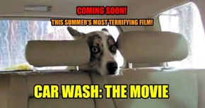 CAR WASH: THE MOVIE