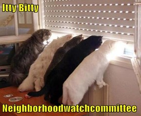 Itty Bitty  Neighborhoodwatchcommittee