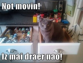 Not movin!  Iz mai draer nao!