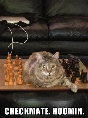CHECKMATE. HOOMIN.