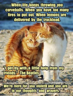 When  life  keeps  throwing  you  curveballs.  When  you  have  too  many  fires  to  put  out.  When  lemons  are  delivered  by  the  truckload.