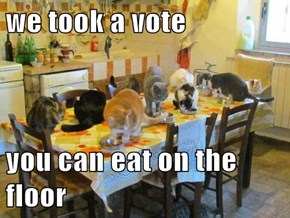 we took a vote  you can eat on the floor
