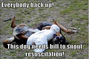 Everybody back up!  This dog needs bill to snout resuscitation!