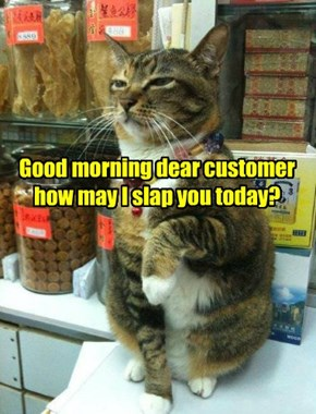 Good morning dear customer how may I slap you today?