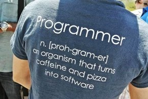 What Being a Programmer Means