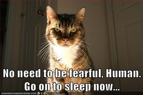 No need to be fearful, Human. Go on to sleep now...