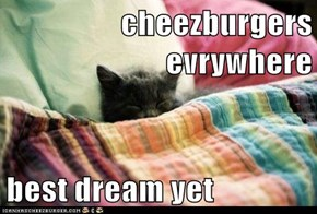 cheezburgers evrywhere  best dream yet