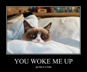 YOU WOKE ME UP