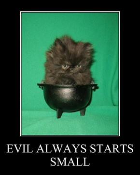 EVIL ALWAYS STARTS SMALL