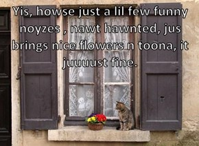 Yis, howse just a lil few funny noyzes , nawt hawnted, jus brings nice flowers n toona, it juuuust fine.