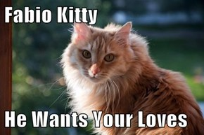 Fabio Kitty  He Wants Your Loves