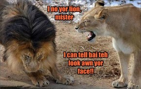Yoo Cant Hide Yor Lion Eyez