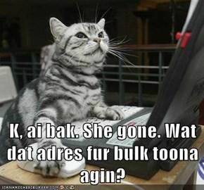 K, ai bak. She gone. Wat dat adres fur bulk toona agin?