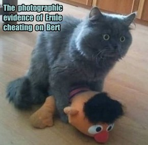 The  photographic evidence  of  Ernie cheating  on  Bert