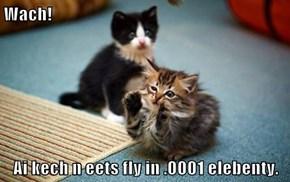 Wach!  Ai kech n eets fly in .0001 elebenty.