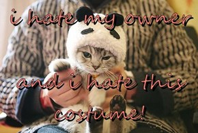 i hate my owner  and i hate this costume!