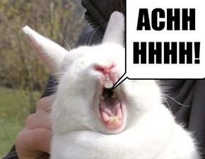 ACHHHHHH!