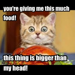 you're giving me this much food!