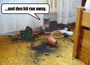 ....and den hii ran away.