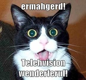 ermahgerd!  Telehvision wenderferul!