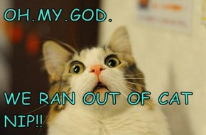 OH.MY.GOD.  WE RAN OUT OF CAT NIP!!