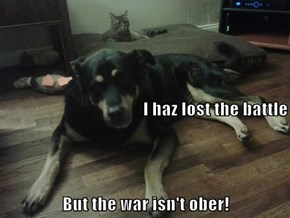 I haz lost the battle But the war isn't ober!