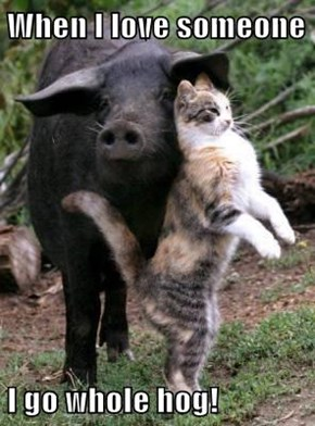 When I love someone  I go whole hog!