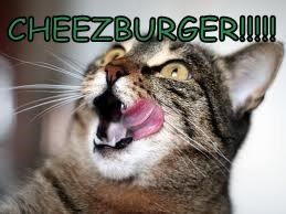 CHEEZBURGER!!!!!