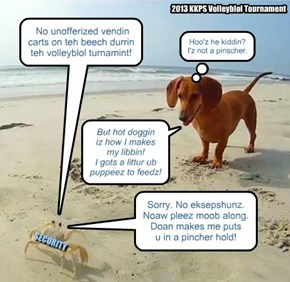 BTW, I'z gonna haz to fine u fur litterin on teh beech, too...