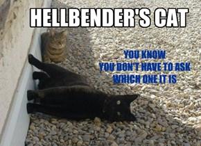 HELLBENDER'S CAT