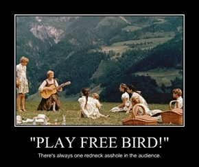 """PLAY FREE BIRD!"""