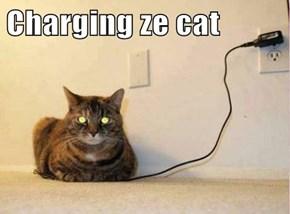 Charging ze cat