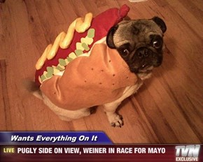Wants Everything On It    - PUGLY SIDE ON VIEW, WEINER IN RACE FOR MAYO