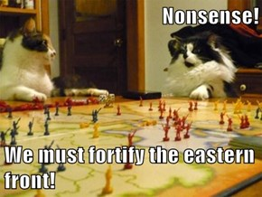 Nonsense!  We must fortify the eastern front!