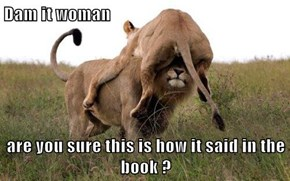 Dam it woman  are you sure this is how it said in the book ?