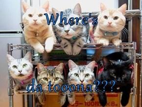 Where's   da tooona???