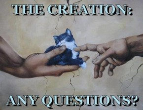 THE CREATION:  ANY QUESTIONS?