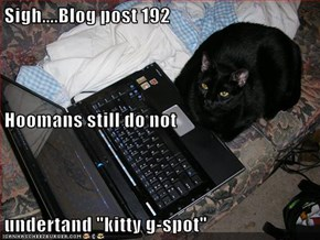"Sigh....Blog post 192 Hoomans still do not undertand ""kitty g-spot"""