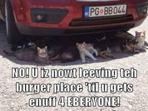 NO! U iz nowt leeving teh burger place 'til u gets enuff 4 EBERYONE!