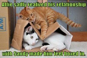 Alfie sadly realized his relationship  with Sandy made him feel boxed in.