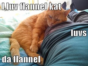 I luv flannel kat luvs da flannel