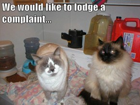 We would like to lodge a complaint...