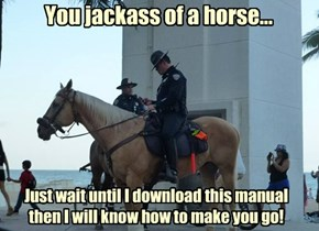 You jackass of a horse...