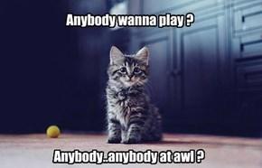 Anybody wanna play ?
