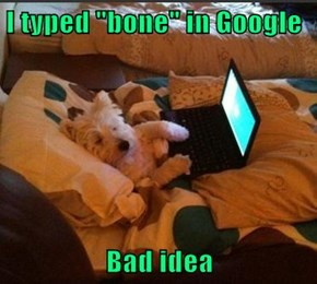 "I typed ""bone"" in Google  Bad idea"